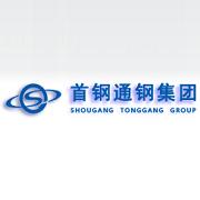 通化钢铁集团股份有限公司