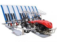 2ZSK-6手扶式宽窄行水稻插秧机