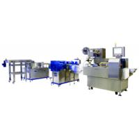 CT-1100臥式自動包裝生產線