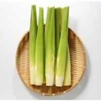 生鮮茭白筍(時價/公斤)
