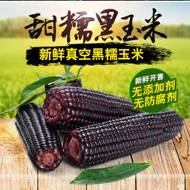 广禾美有机甜糯玉米欢迎各地区加盟代理