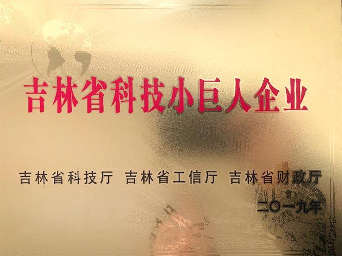 吉林省科技小巨人企业