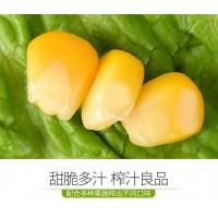 水果甜玉米粒