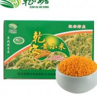 黄金苗黄小米厂家 黄金苗小米产地 黄金苗小米的品种