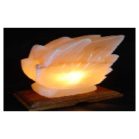 阿克玛喜马拉雅粉红盐灯