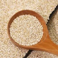 藜麦米和藜麦粉系列产品